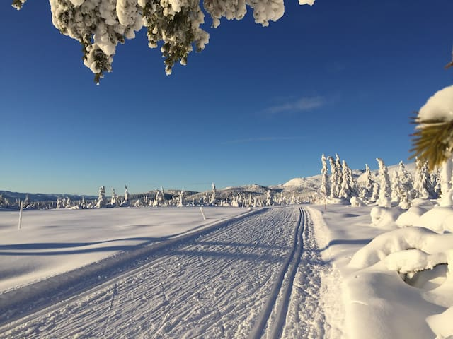 Norefjell, 903 moh
