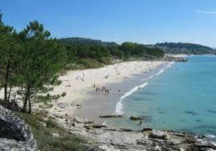 NATURAL AND WILD BEACH BEACH