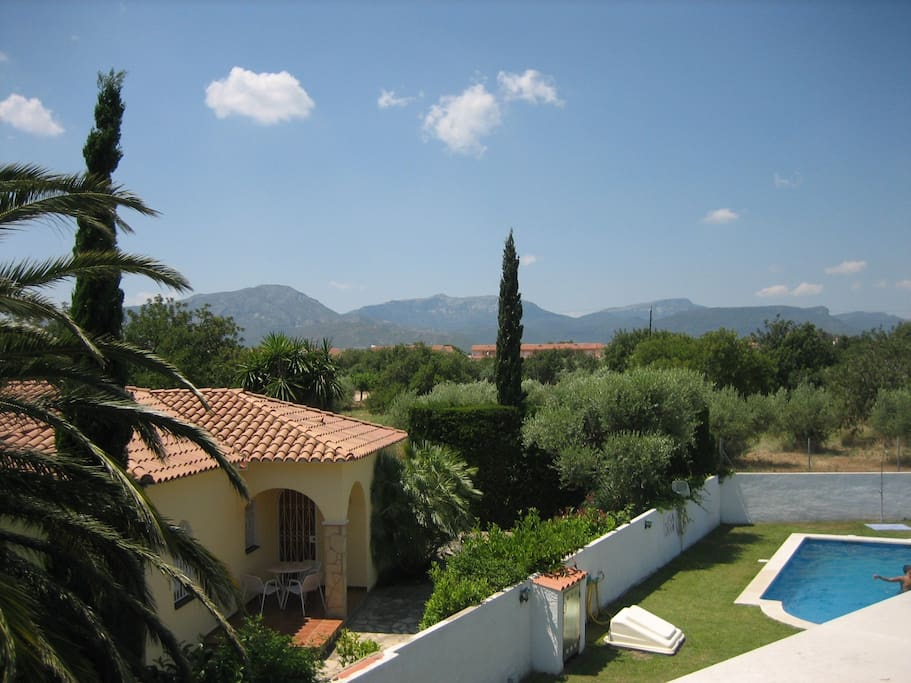 View of the pool, olive grove and mountains beyond