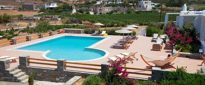 Sea view villa for 6 in a luxury complex in Paros.