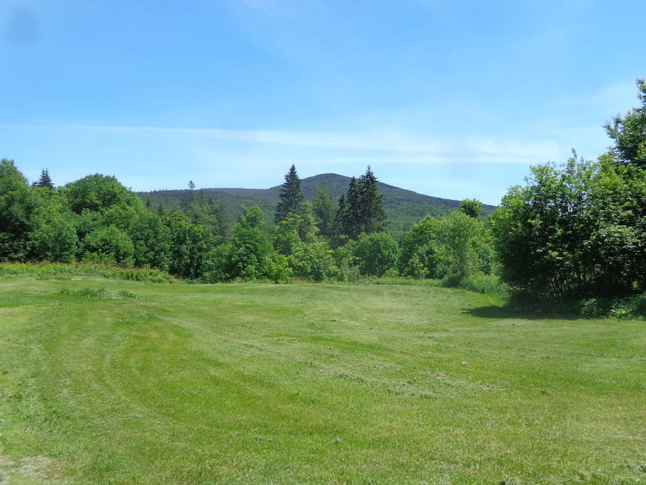 Spruce Mountain has great hiking trails and is just one mile away. Expansive views across the field and 133 acres.