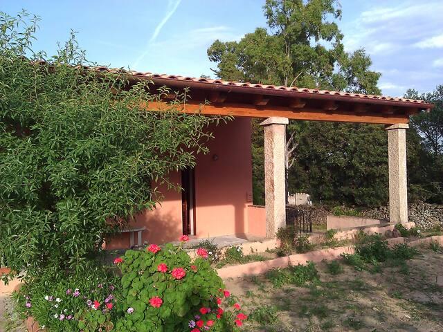 Cosy House nearby Cala D'Ambra - San Teodoro