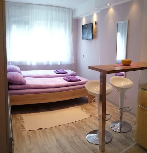 City Central Mini Apartment