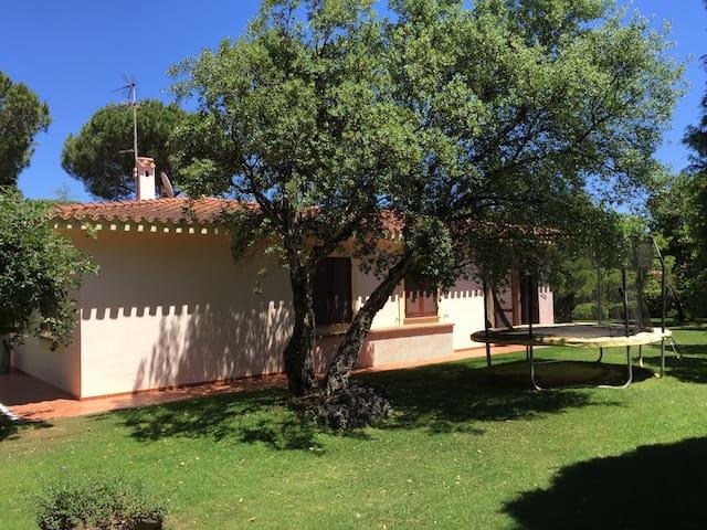 Beautiful renovated villa by the sea in Sardinia