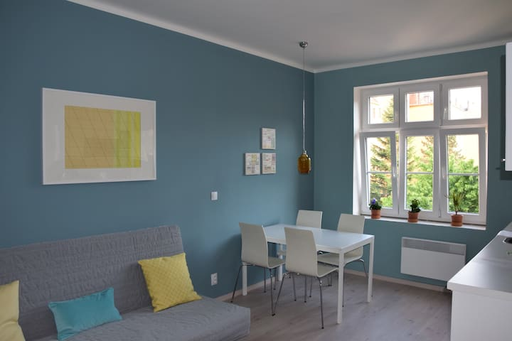 Design apartment 5 in Pilsen center - Plzeň - Lägenhet