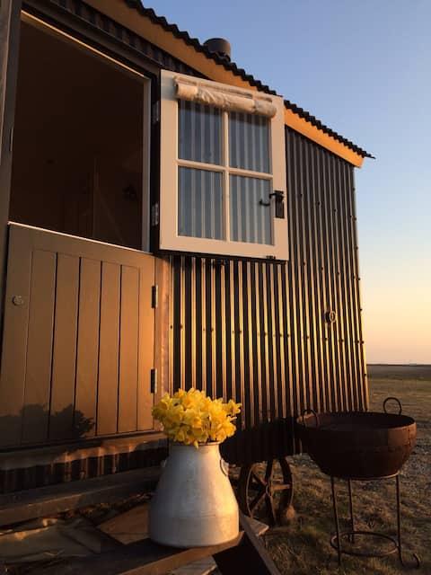 The Salty Shepherd; rural solitude near the beach