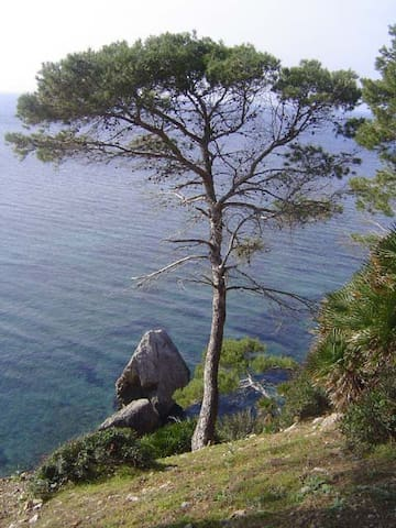 Mediterrane Umgebung