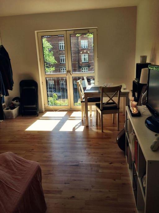 Combined livingroom and bedroom