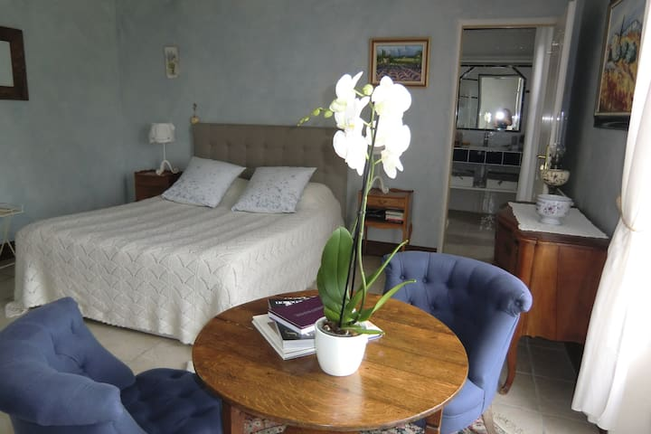 Chambre Lavande pour 2 personnes - Saint-Lubin-en-Vergonnois - Bed & Breakfast