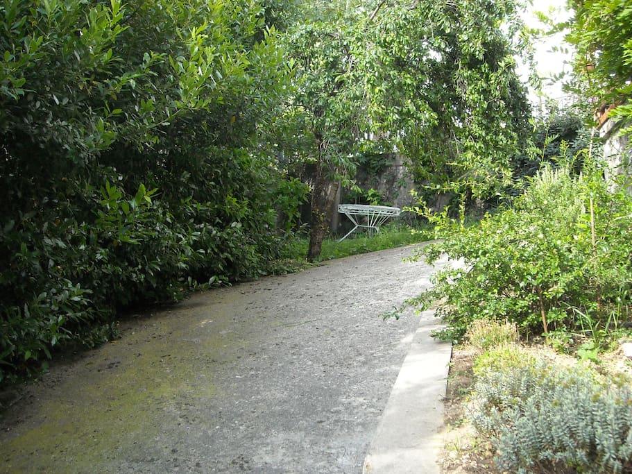 Vialetto giardino privato