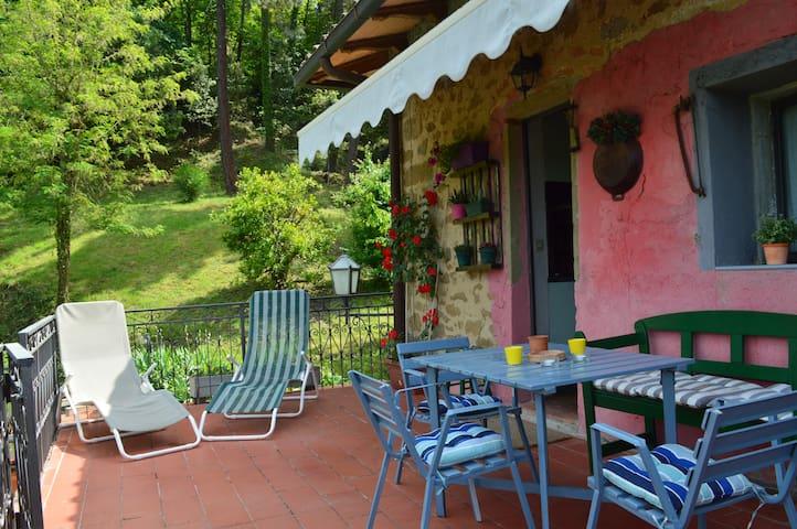 casa mezzomonte Apt Timo - Greve in Chianti