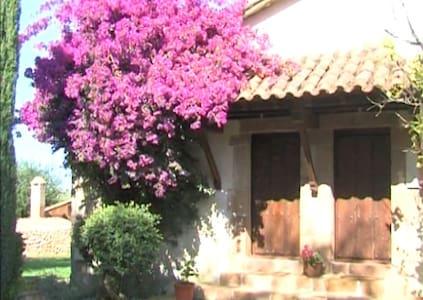 Estudio en vivienda rural en Oreña - Oreña