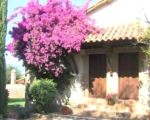 Estudio loft en vivienda rural en Oreña