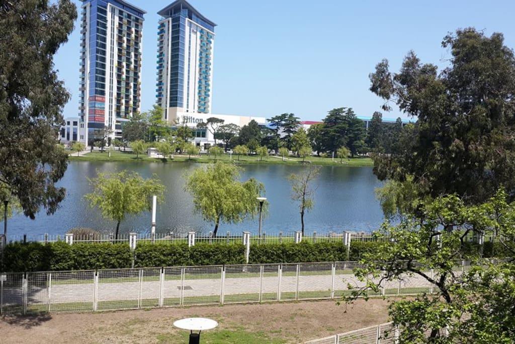 вид с балкона, на парк и гостиницу хилтон