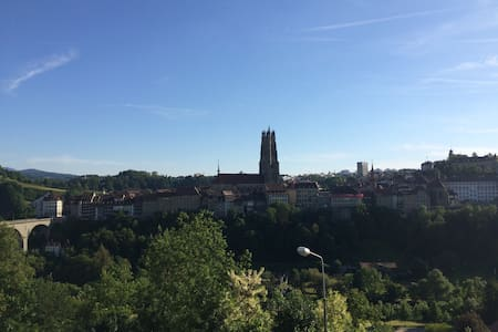 Cosy Fribourg :) - Fribourg - Daire