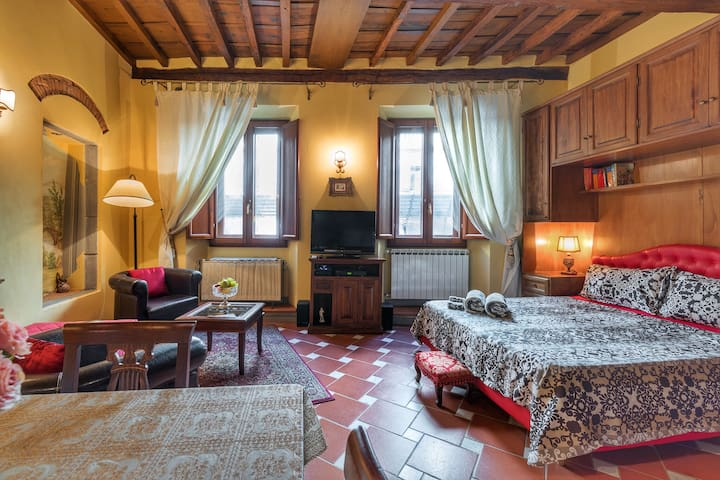 Cozy apartment in BEST position of Florence, 欢迎你!