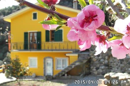 Camera Bosco - 韋爾納扎(Vernazza) - 家庭式旅館