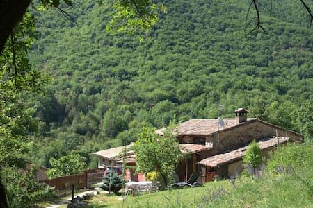 casa rural MAS MOLLADIC - Camprodon