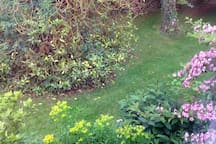 View from side bedroom window