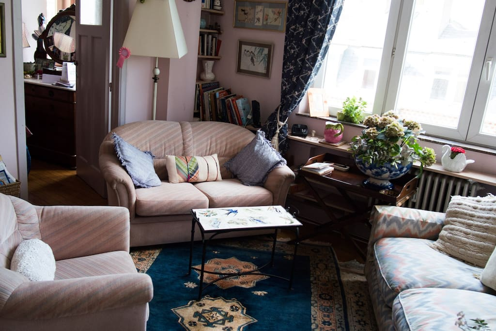 Cozy living room to spend hours reading and chatting!