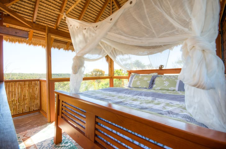 Noosa Tree Top Eco Retreat - Sunrise Beach - Casa