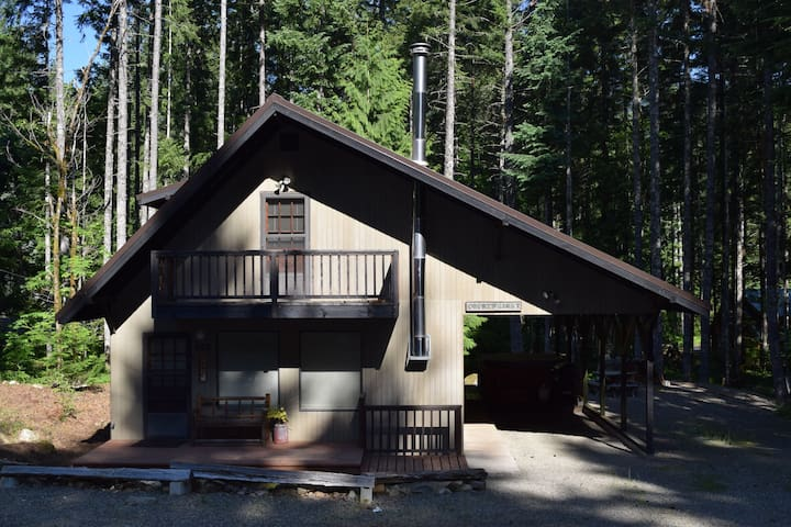 """4 Seasons, WiFi, sleeps 11, Hot tub, Mt Rainier"