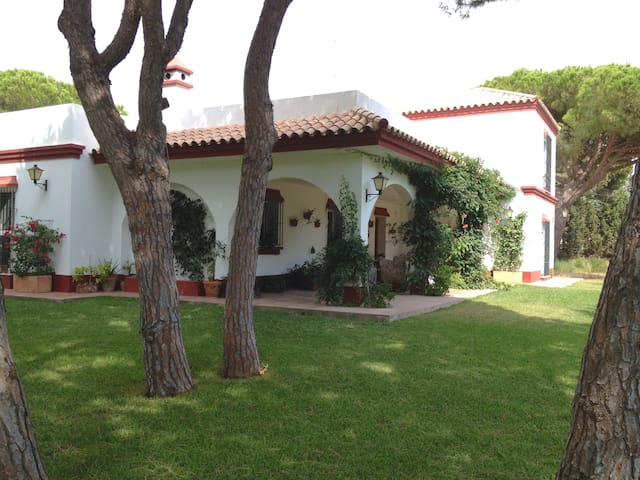 Big family Vila with swimming pool near the beach - Conil de la Frontera - Villa