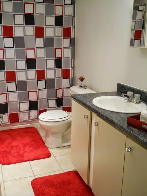 Salle de bain comprenant un bain/douche, laveuse et sécheuse. / Bathroom with washer and dryer.