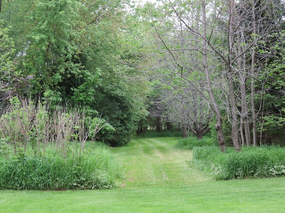 Trails are ready for you to wander our property.