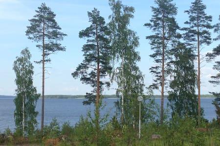 Уютный коттедж для компании на берегу озера Сайма - Taipalsaari - Dům