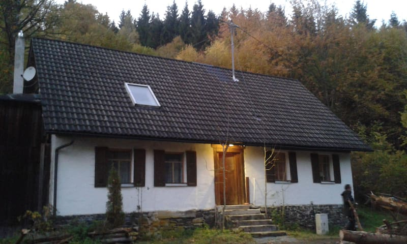Der Waldgang - Wilhelmsthal - House