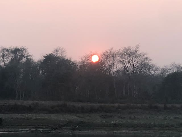 Near to chitwan national park