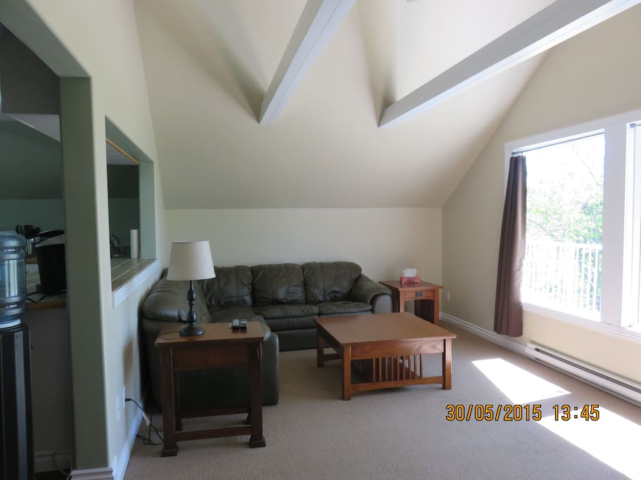 Living room with vaulted ceiling and sectional couch.