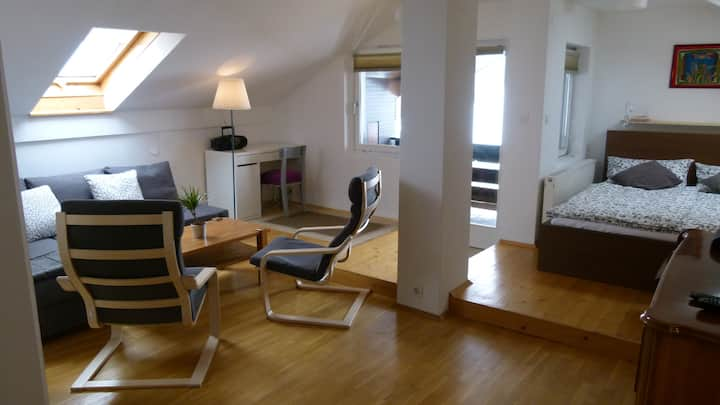 A spacious and light apartment Matej