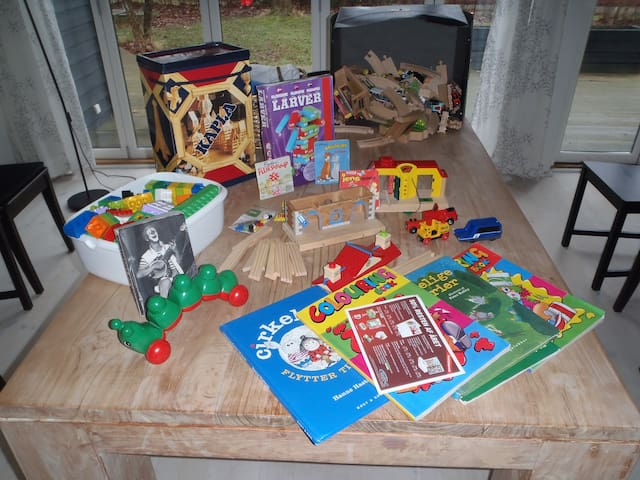 Lots of toys, some books and a DVD for the little ones