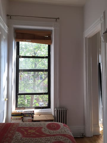 Bright Bedroom in Park Slope - Brooklyn - Apartment