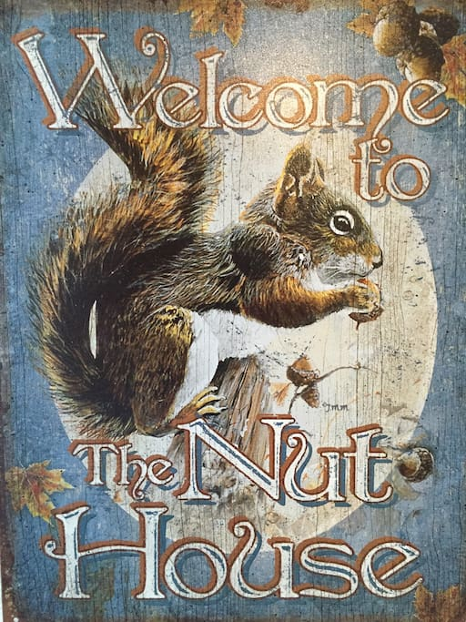 Welcome!  I am a squirrel from Chapel Hill. Aside from collecting nuts, my # 1 passion is to host awesome guests like you. It is my pleasure to be your host for the time you will stay at this gorgeous AirBNB location.