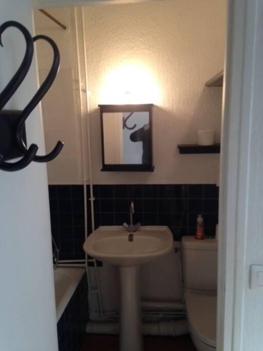 Bathroom with bathtub, washbasin and toilets, bathroom linen supplied