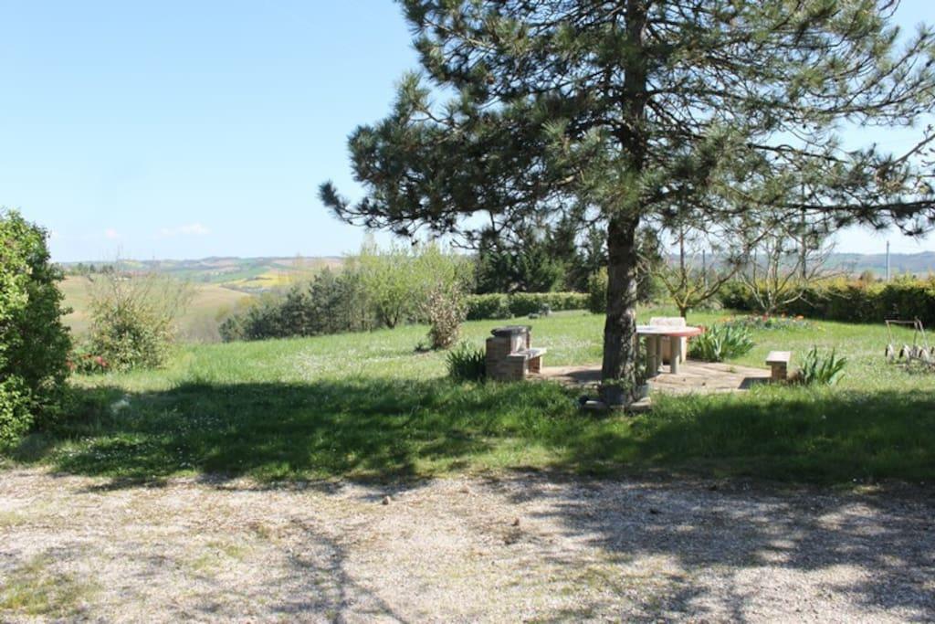 Le jardin avec un coin pour manger à l'ombre des sapins