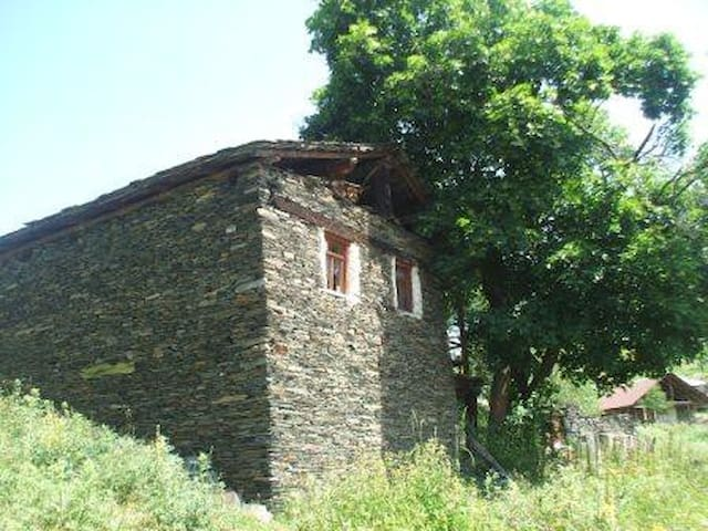 Guest-house in Omalo