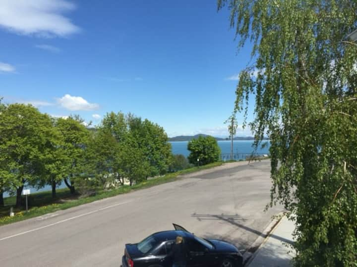 Well appointed lake view condo