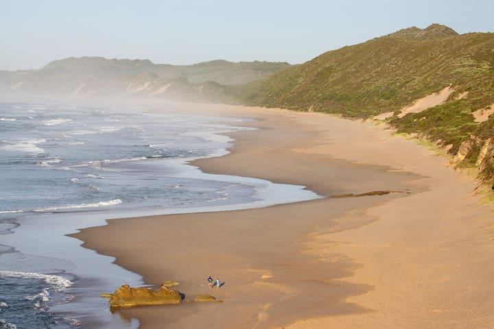 The Beach walk is an easy 4.54 km (one way) stroll to Buffalo Bay, it takes around 2 hours.