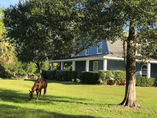 Hacienda Azul Left Side