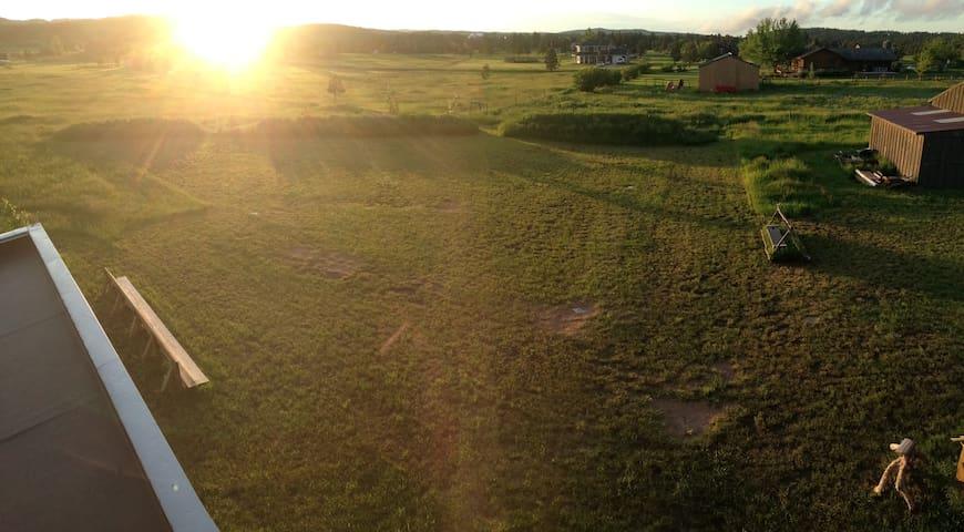 Arial view of wiffleball field in the backyard
