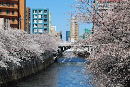 Gentle & comfortable space is offered. A stunning location, in the heart of Tokyo,mixture of neat convenient shopping area with old shrines and temples. Ideal location for a traveler who is looking for a nest walking around Tokyo.