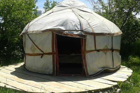 Yurt at Bel-Zhan lodge