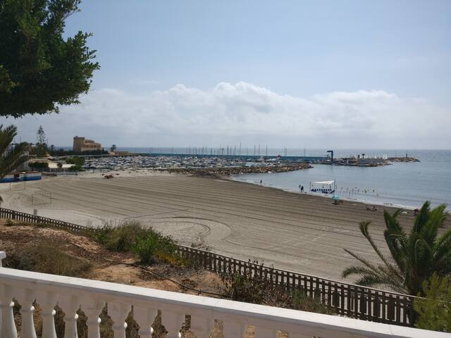 Harbour Pilar
