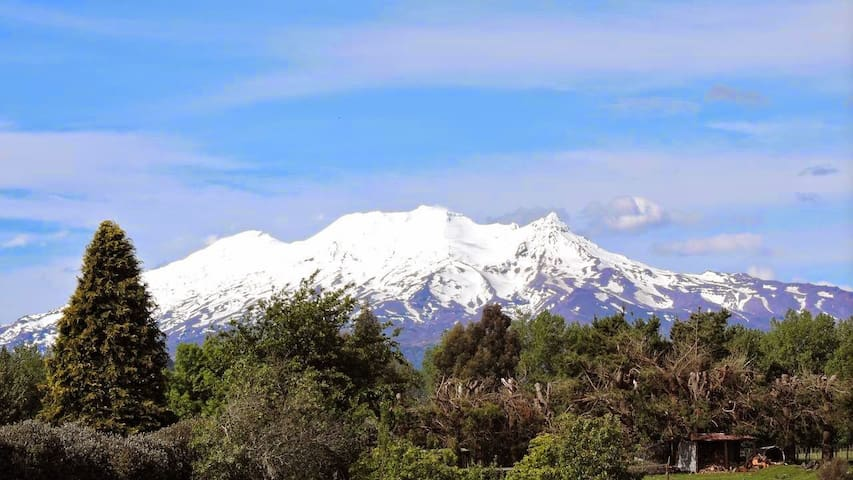Ohakune Mountain Retreat- dble room - Ohakune