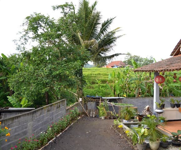 Homestay Bundaiyah Bugel Salatiga - Salatiga City - Casa