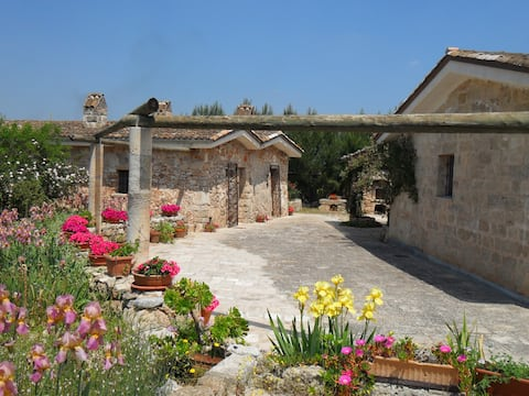 Cozy cottage at center of Salento